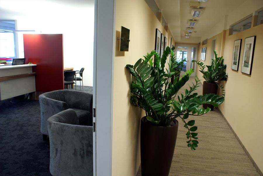 Businessfotos in Firmenräumen