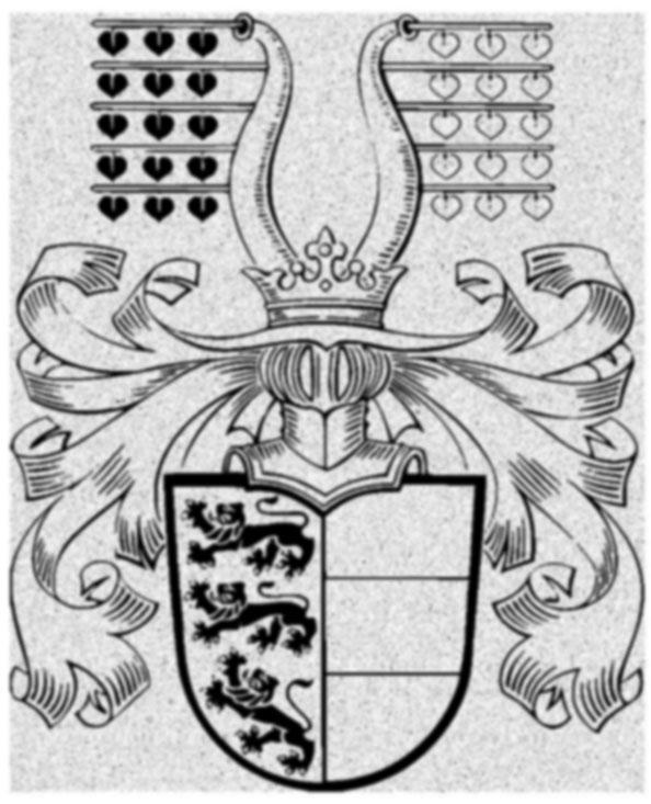 Nachzeichnung Wappen Vektorisierung